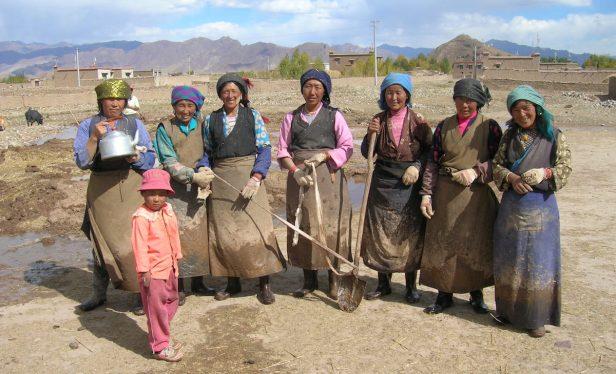 Pix Tibetan women working on the land