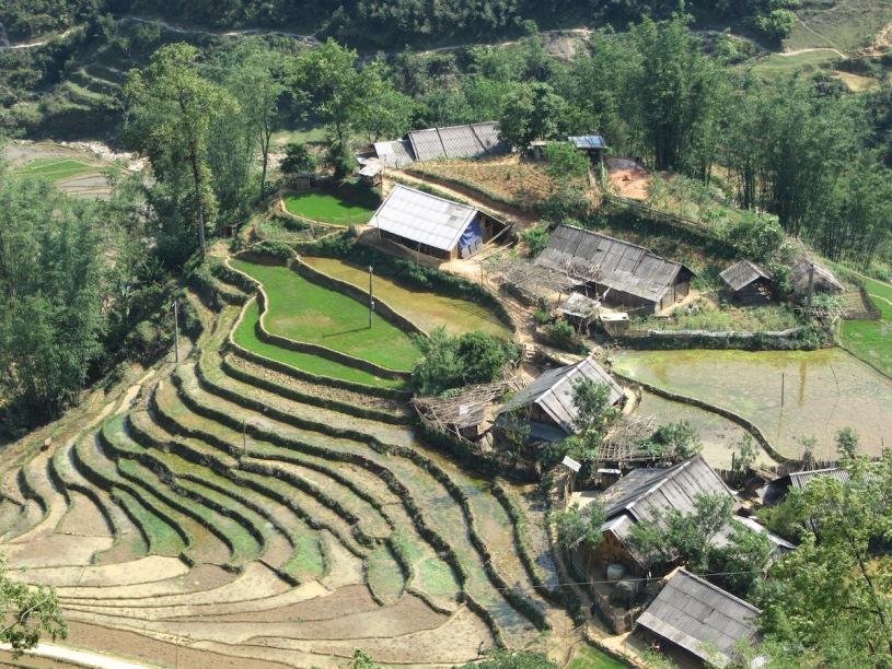 Pix terraced fields